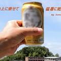 Photos: 猛暑に乾杯!(^^)