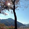 晩秋の富士(2)