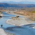 Photos: 多摩川を渡る八高線