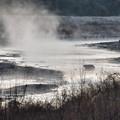 霧の河川敷(夜明前)