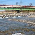 Photos: 浅川の春