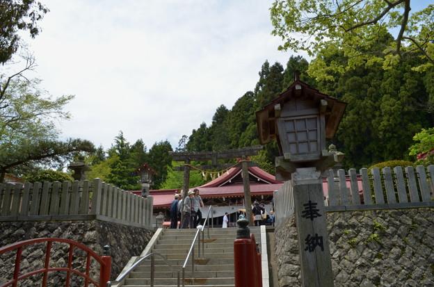 写真: 金蛇水神社