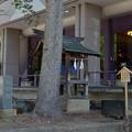 写真: [南陽市] 熊野大社・水神社