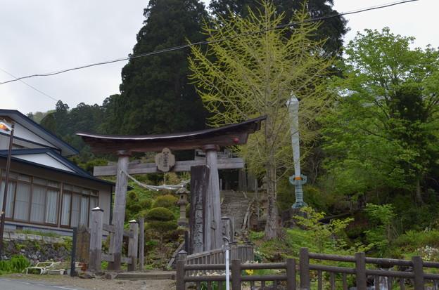 写真: 早池峰神社 大迫・一の鳥居