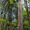 写真: 十和田神社・二の鳥居