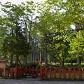 写真: 出羽神社・鏡池