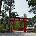 写真: 出羽神社・鳥居