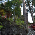 写真: 榛名神社・萬年泉と矢立杉