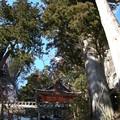写真: 榛名神社・社殿