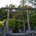写真: 赤城神社[三夜沢]
