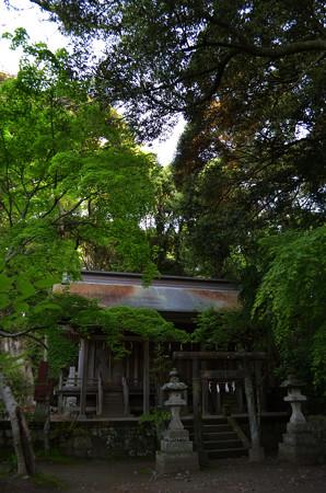 大洗磯前神社・大神宮、静神社、水天宮