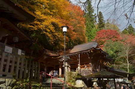 貴布禰神社総本宮・拝殿