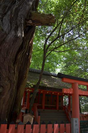 春日大社・水谷神社