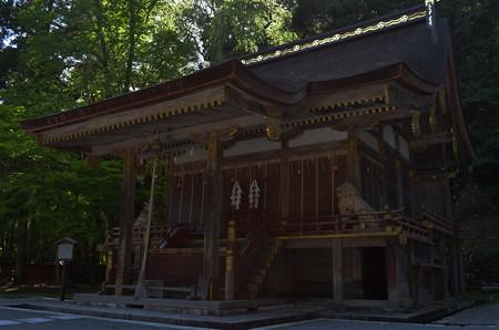 樹下神社・本殿