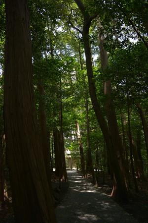 園相神社7