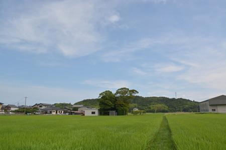 加努弥神社1