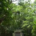 写真: 河原淵神社5