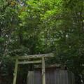 写真: 河原淵神社6