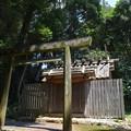 写真: 蚊野神社・蚊野御前社3