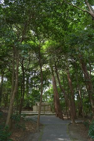 鴨下神社3