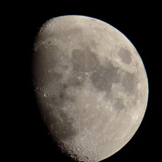 月面リベンジ