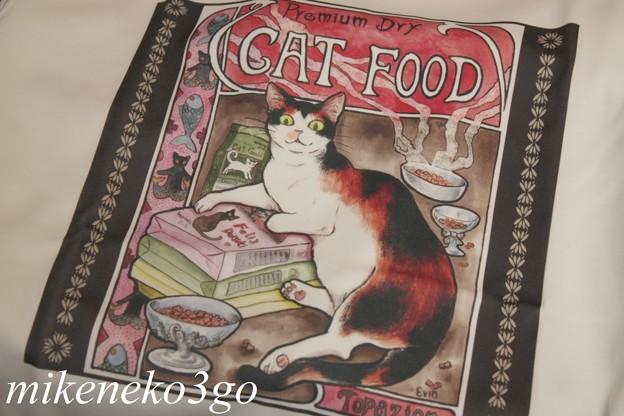 Photos: 猫T