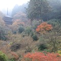 IMG_4061高源寺