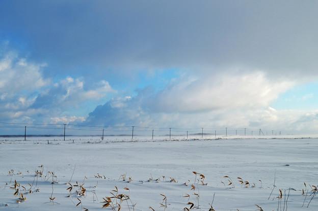 空と平原4