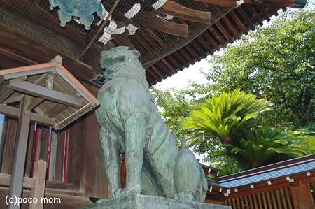 博多 櫛田宮狛犬2012年08月18日_DSC_0524