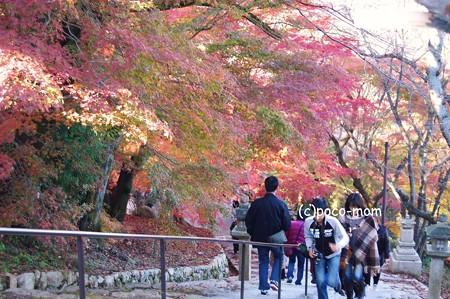 三井寺 観音堂へ2012年11月25日_DSC_0160