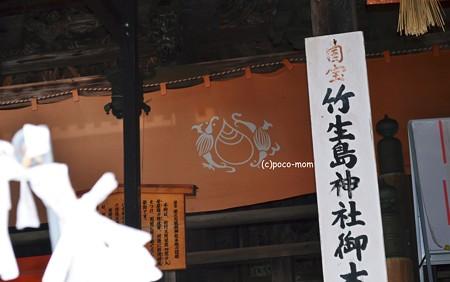 竹生島神社神紋2013年01月13日_DSC_02481