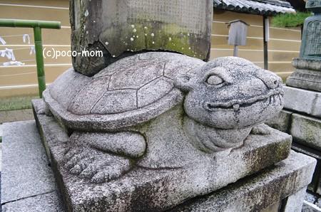 贔屓 東寺大師堂2013年01月14日_DSC_0552