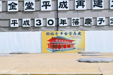 興福寺 中金堂2013年04月29日_DSC_0213