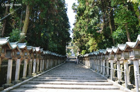 生駒聖天 宝山寺2013年04月29日_DSC_0273