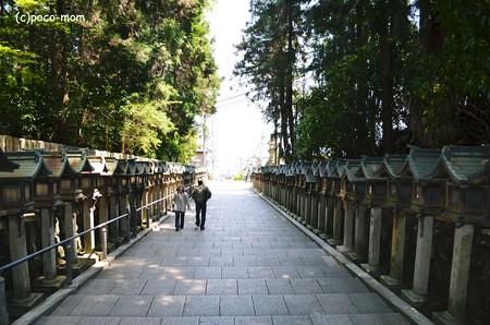 生駒聖天 宝山寺2013年04月29日_DSC_0274