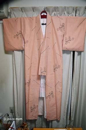 単衣の紬2013年05月19日_DSC_0630
