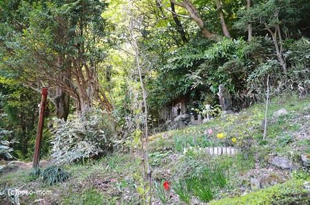生駒山岩谷の滝2013年04月29日_DSC_0360