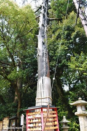 往馬神社2013年04月29日_DSC_0444