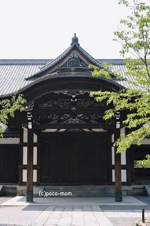 京都武道センター 武徳殿2013年08月15日_DSC_0079