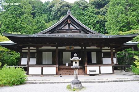 円成寺2013年08月16日_DSC_0297