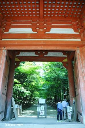 醍醐寺2013年08月17日_DSC_0390