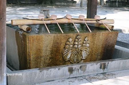 豊国神社2013年08月17日_DSC_0417