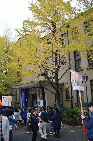会津八一記念館2013年11月03日_DSC_0501