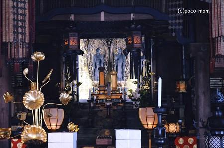 嵯峨嵐山 二尊院2013年11月24日_DSC_0086