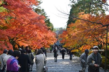 嵯峨嵐山 二尊院2013年11月24日_DSC_0100