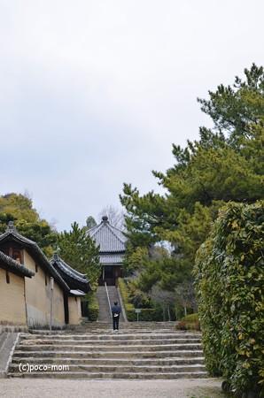 法隆寺西円堂2014年02月10日_DSC_0398