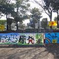 Photos: さよなら原発!11.18宮崎集会2