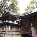 写真: 生目神社4