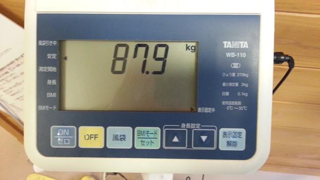 体重、ちょっと減りました