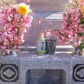 2月5日、母の命日